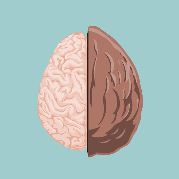 Therapy in a Nutshell lnut logo